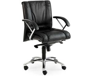 Poltrona lido poltrone classiche sedie e poltrone for Negozi sedie ufficio roma